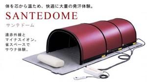 SanteDome-image-w540h300