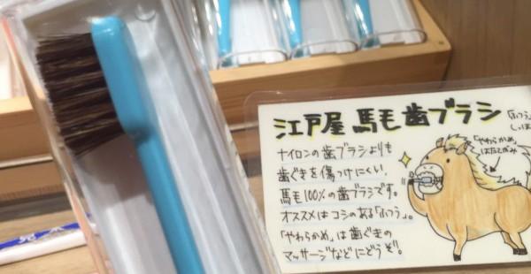 日本橋 江戸屋 創業280余年の老舗の馬毛歯ブラシを使ってみたよ