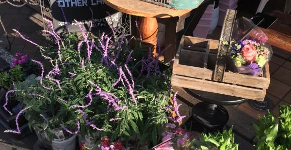 横浜元町 PeaceflowerMarket&cafe  お花屋さんの素敵カフェでうっとり
