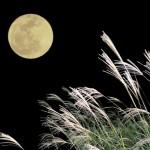 2017 牡羊座で満月